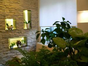 Дизайн растениями интерьеров помещений