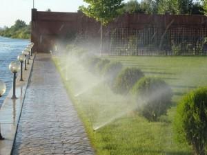 Установка капельного полива в Одессе
