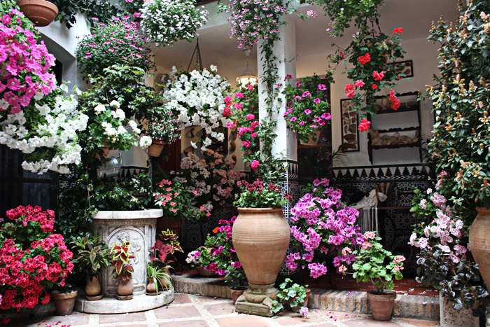 Ландшафтный дизайн сада в Одессе