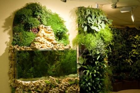 Создание вертикальных садов в Одессе