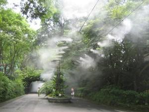 Применение систем туманообразования в Одессе