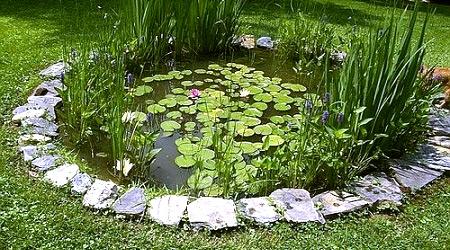 Искусственные пруды в ландшафтном дизайне сада в Одессе