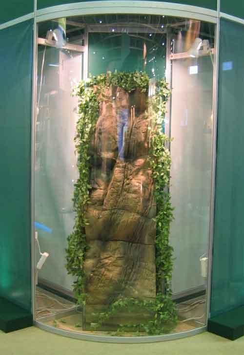 Озеленение комнатных водопадов и фонтанов