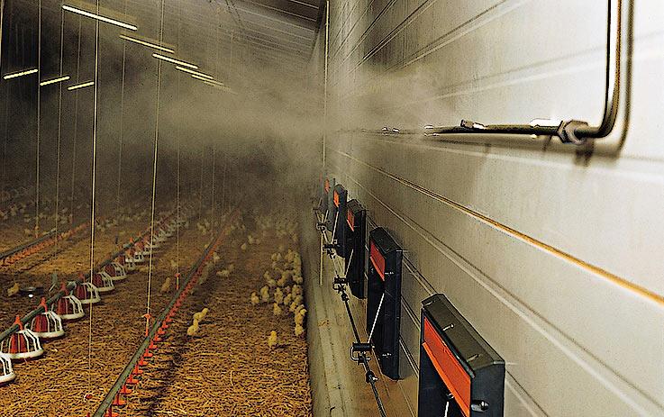 Туманное охлаждение в птицеводстве