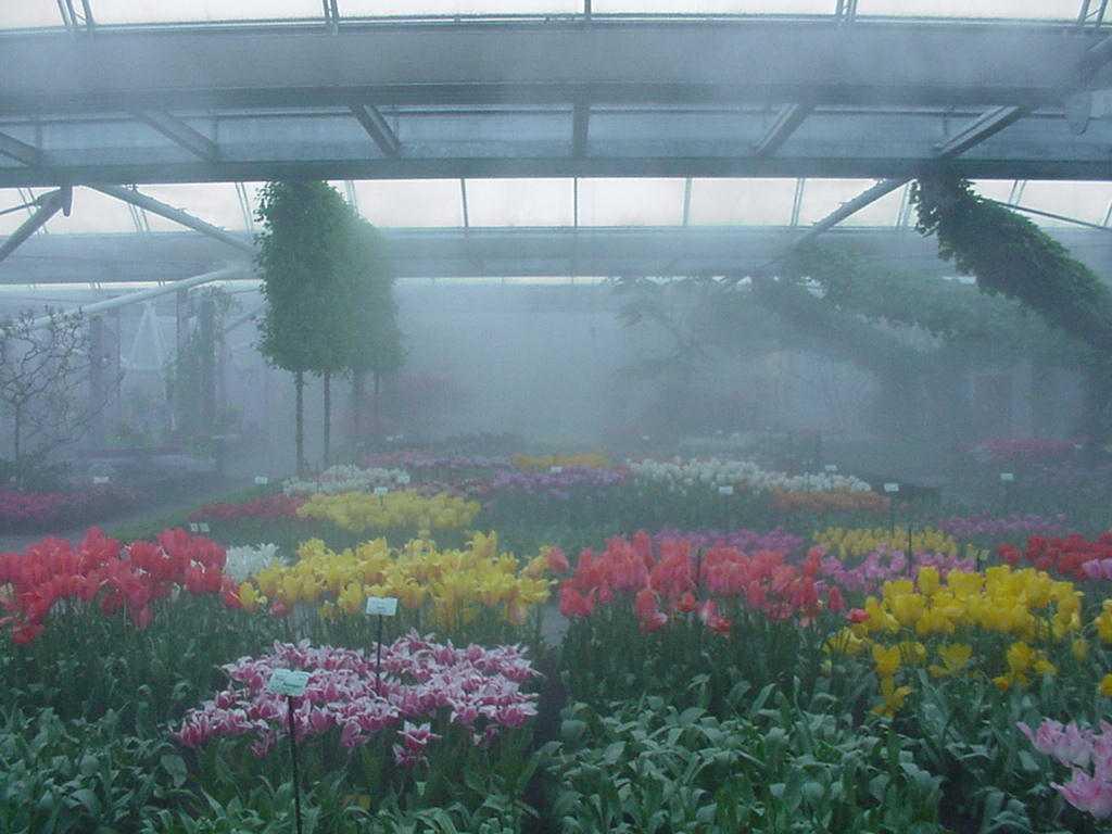 Система туманообразования в сельском хозяйстве