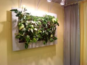 Фито картины в дизайне интерьера в Одессе