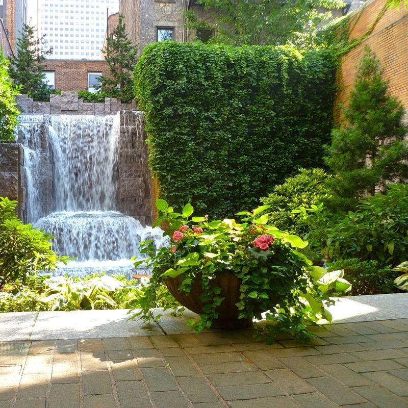 Вертикальные сады и озеленение в Одессе