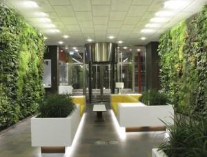 Дизайн помещений растениями в Одессе