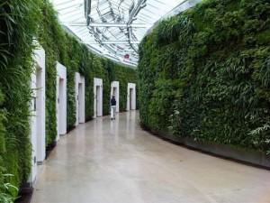 Вертикальные сады в Одессе