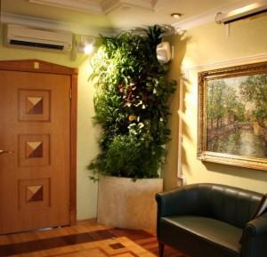 Растения в дизайне интерьера в Одессе