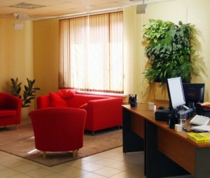 Дизайн растениями интерьеров помещений в Одессе