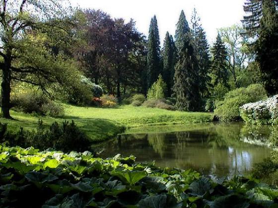 Пейзажный стиль сада в Одессе