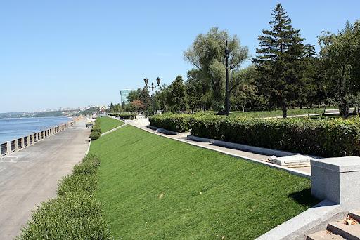 Зеленый газон на участке в Одессе