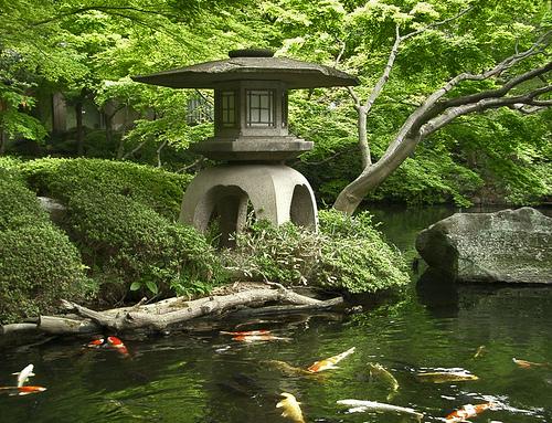 Планировка японского сада в Одессе