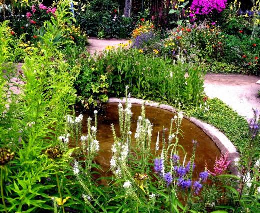 Создание цветников на садовом участке в Одессе