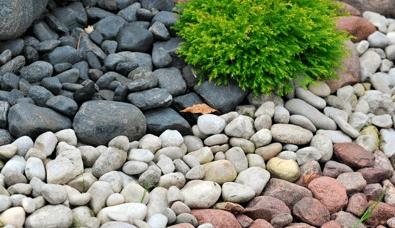 Создание каменистого сада в Одессе