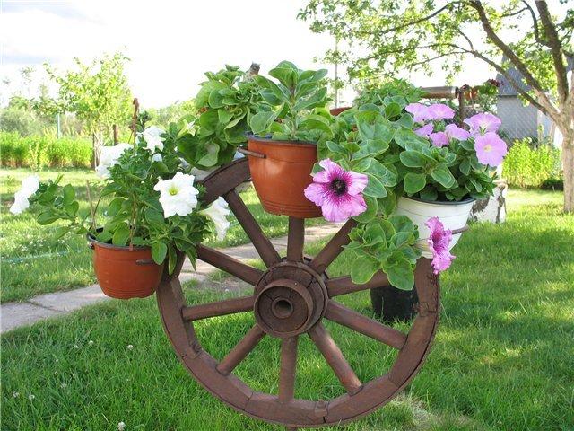 Оформление садового участка в Одессе