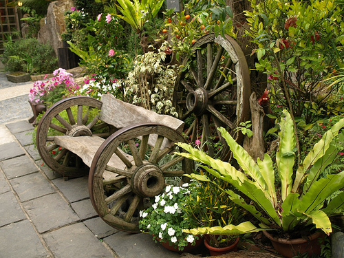 Садовый дизайн участка в Одессе