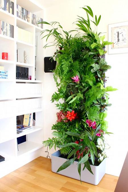 Дизайн растениями интерьеров в Одессе