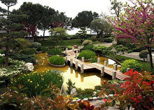 Китайский стиль ландшафтного дизайна сада в Одессе