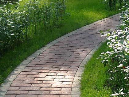 Газон на садовом участке в Одессе