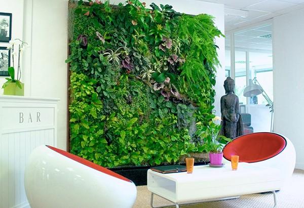 Вертикальное озеленение интерьеров помещений в Одессе