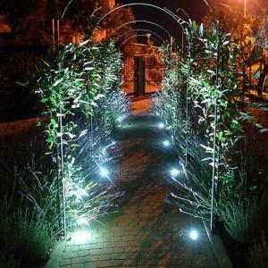 Ландшафтное освещение садового участка в Одессе