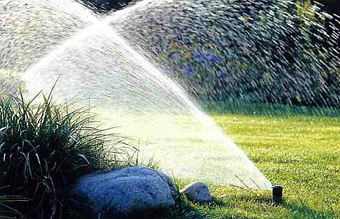 Капельный полив для сада в Одессе