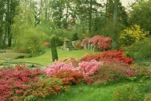 Пейзажный сад в Одессе
