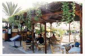 Системы туманообразования для летних площадок кафе и ресторанов в Одессе