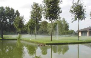 Капельный полив для садового участка в Одессе