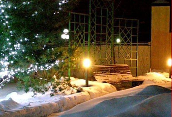 Зимнее освещение сада в Одессе