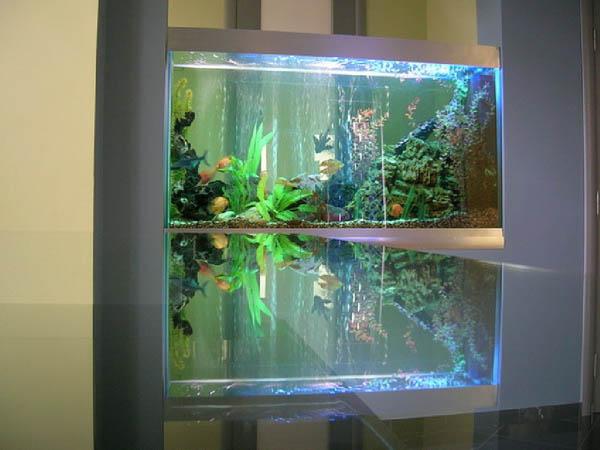 Дизайн  и оформление аквариумов в Одессе