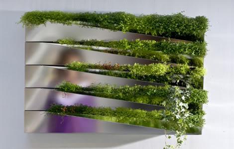 Озеленение интерьеров помещений в Одессе