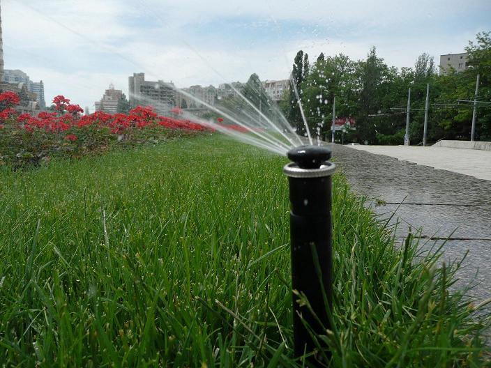 Капельный полив садовых участков в Одессе
