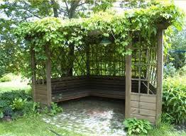 Вертикальное озеленение сада в Одессе