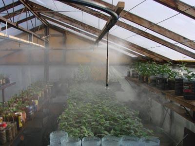 Системы увлажнения в тепличном хозяйстве