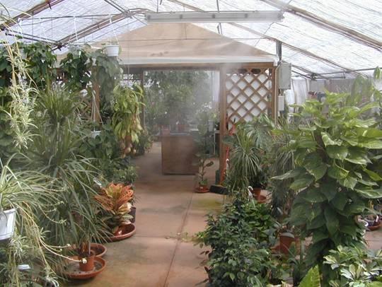 Достоинства системы туманообразования