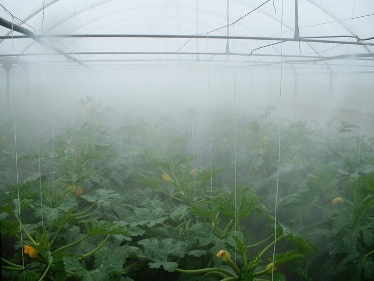 Создание микроклимата в теплице с помощью тумана